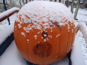 Snow on the Pumpkin Ozark Arkansas Eureka Springs