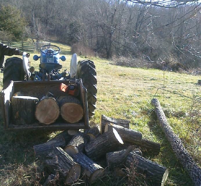 """""""Notes from the Hollow"""" Ozarks firewood"""