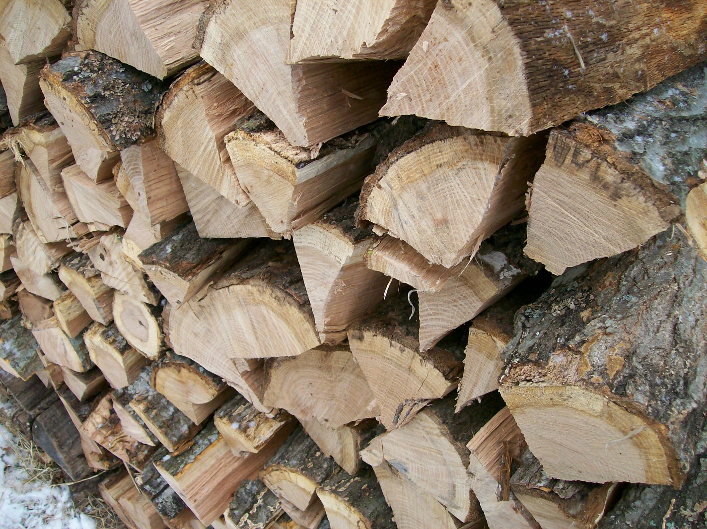 """""""Notes from the Hollow"""" Ozarks firewood stacked"""