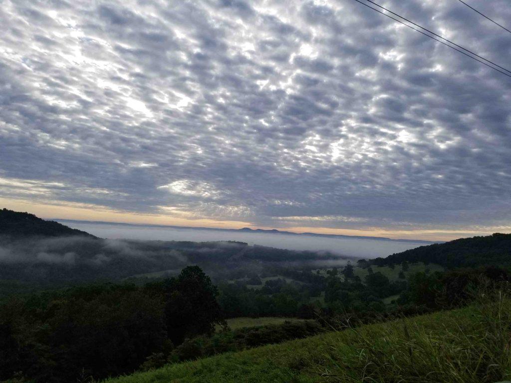 Morning mist over Kings River